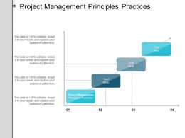 Project Management Principles Practices Ppt Powerpoint Presentation Infographics Structure Cpb