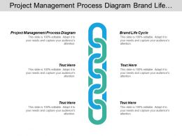 Project Management Process Diagram Brand Life Cycle Strategies Business Cpb