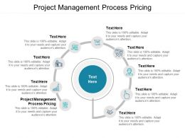 Project Management Process Pricing Ppt Powerpoint Presentation Layouts Ideas Cpb