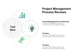 Project Management Process Reviews Ppt Powerpoint Presentation Summary Picture Cpb