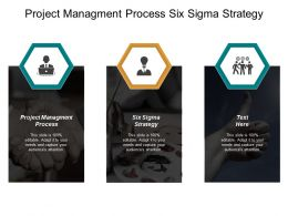 Project Management Process Six Sigma Strategy Project Review Cpb