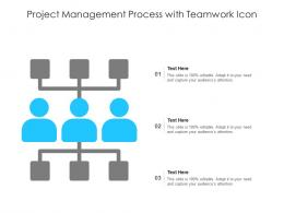 Project Management Process With Teamwork Icon