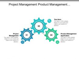 Project Management Product Management Application Global Economic Development Cpb