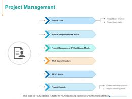 Project Management Project Team Ppt Powerpoint Presentation Inspiration Model