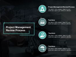 Project Management Review Process Ppt Powerpoint Presentation Model Clipart Cpb