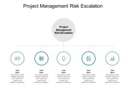 Project Management Risk Escalation Ppt Powerpoint Presentation Infographics Graphic Tips Cpb