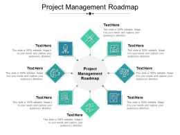 Project Management Roadmap Ppt Powerpoint Presentation Summary Gridlines Cpb