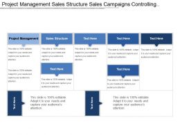 Project Management Sales Structure Sales Campaigns Controlling Tools