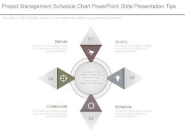 Project Management Schedule Chart Powerpoint Slide Presentation Tips