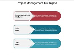 Project Management Six Sigma Ppt Powerpoint Presentation Outline Clipart Images Cpb