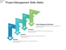 Project Management Skills Matrix Ppt Powerpoint Presentation Outline Portrait Cpb