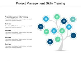 Project Management Skills Training Ppt Powerpoint Presentation Slides Cpb