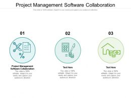Project Management Software Collaboration Ppt Powerpoint Presentation Professional Graphics Example Cpb