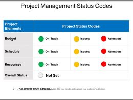 Project Management Status Codes Powerpoint Slide