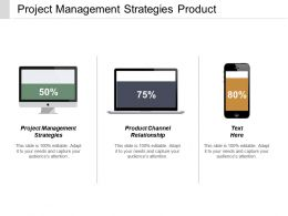 Project Management Strategies Product Channel Relationship Strategic Segmentation Cpb