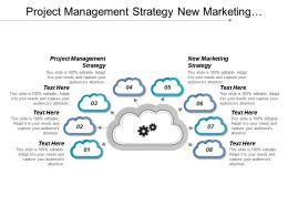 Project Management Strategy New Marketing Strategy Strategic Partnerships Cpb