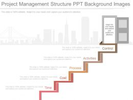 Project Management Structure Ppt Background Images