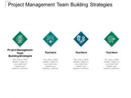 Project Management Team Building Strategies Ppt Powerpoint Presentation Slide Cpb