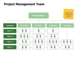 Project Management Team Business Ppt Powerpoint Presentation Icon Designs