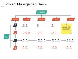 Project Management Team Communication Ppt Summary Example Introduction