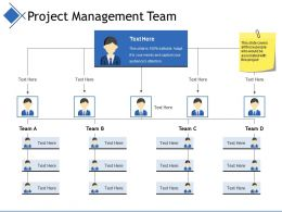 Project Management Team Example Of Ppt
