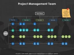 Project Management Team Management Ppt Powerpoint Presentation File Format