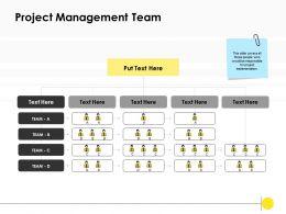 Project Management Team Management Ppt Powerpoint Presentation Graphics
