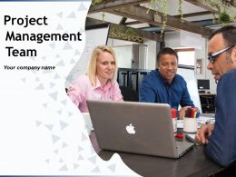 Project Management Team Powerpoint Presentation Slides
