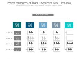 Project Management Team Powerpoint Slide Templates