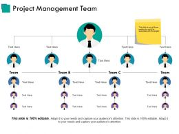 Project Management Team Powerpoint Templates Download