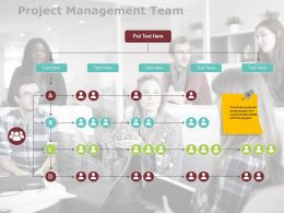 Project Management Team Ppt Powerpoint Presentation Gallery Graphics Design