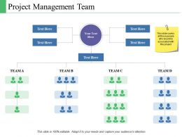 Project Management Team Ppt Powerpoint Presentation Model Layouts
