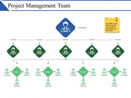 Project Management Team Ppt Sample Presentations