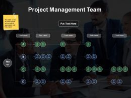 Project Management Team Ppt Styles Demonstration
