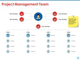 Project Management Team Ppt Summary Example File