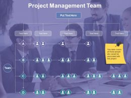 Project Management Team Ppt Template