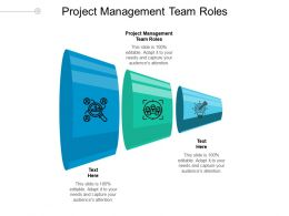 Project Management Team Roles Ppt Powerpoint Presentation Gallery Icons Cpb