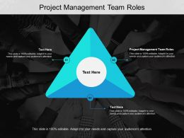 Project Management Team Roles Ppt Powerpoint Presentation Summary Show Cpb