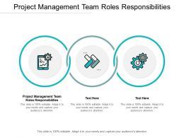 Project Management Team Roles Responsibilities Ppt Visual Aids Model Cpb