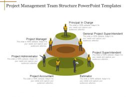 Project Management Team Structure Powerpoint Templates
