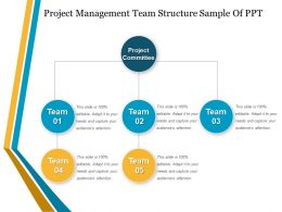Project Management Team Structure Sample Of Ppt
