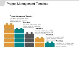 Project Management Template Ppt Powerpoint Presentation Gallery Inspiration Cpb