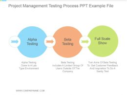 Project Management Testing Process Ppt Example File
