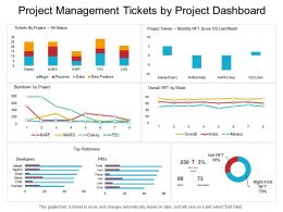 Project Management Tickets By Project Dashboard