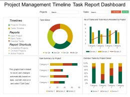 Project Management Timeline Task Report Dashboard