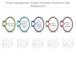 Project Management Timeline Template Powerpoint Slide Backgrounds