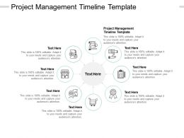 Project Management Timeline Template Ppt Powerpoint Presentation Show Cpb