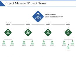 Project Manager Project Team Ppt Example File