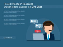 Project Manager Resolving Stakeholders Queries On Live Chat