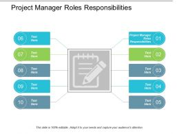 Project Manager Roles Responsibilities Ppt Powerpoint Presentation File Introduction Cpb